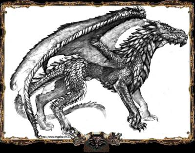 http://journal.the-witcher.de/media/content/wj01_fanart_drache1_s.png